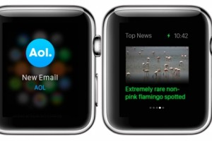 Apple_Watch_Graphic_for_Press_Release